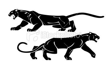 Two Black Panthers Drawing On A White Background Panther Tattoo Panther Art Big Cats Art