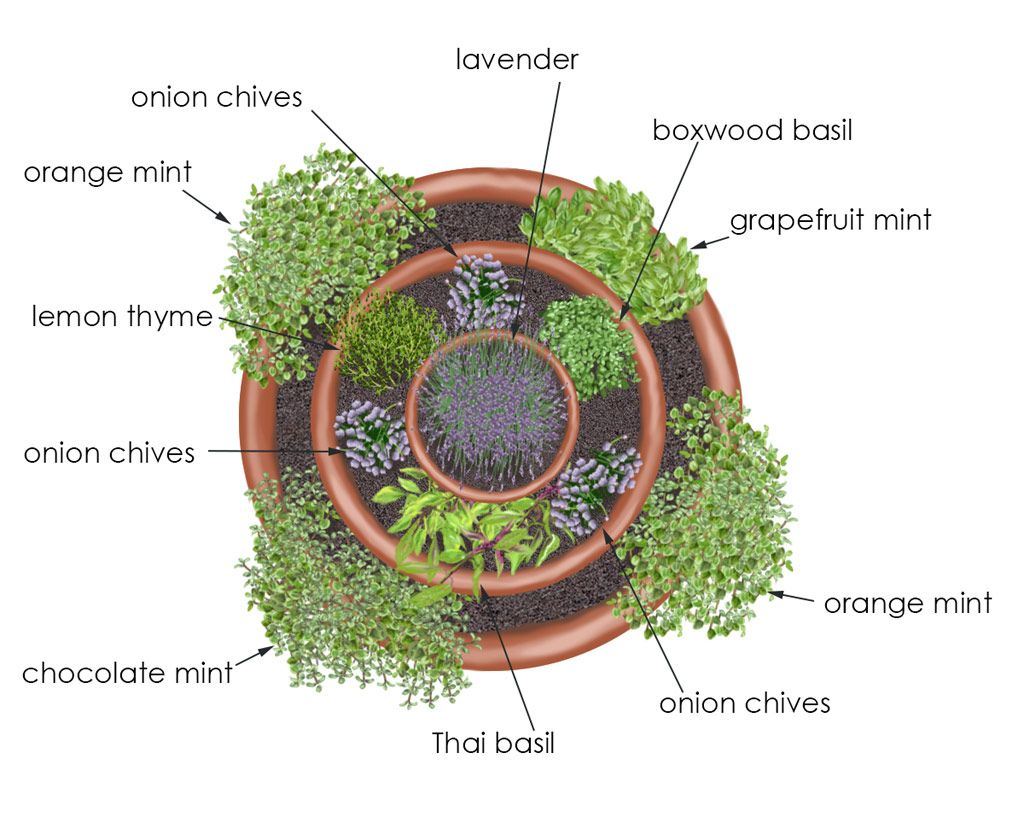 Overhead View Of Herb Tower Container Garden   Creative Edible Container  Garden Using An Arrangement Of Three Pots (one One And One   Herb Gardening  Today