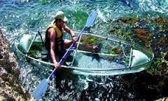 http://excursionsofkeywest.com/clear-kayak-tour.shtml