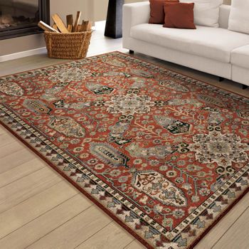 Just Ordered This Rug For Living Room Soft Impressions