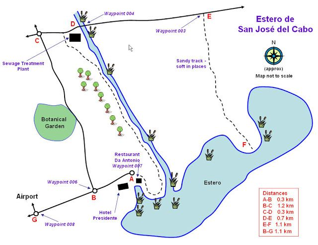 San Jose del Cabo Estuary Map Travel Pinterest San jose del