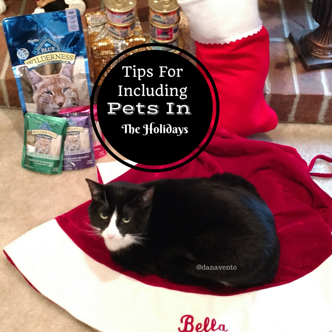 Tips For Including Your Pet In The Holiday Festivities Holidays Pets Pet Stockings Pet Dogs