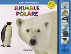 Animale polare -  -  - Aceasta carte face parte din colectia Prima mea biblioteca a editurii Girasol.