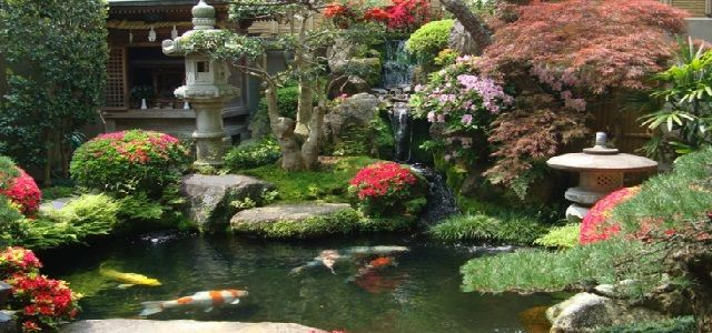 japanese koi pond garden design