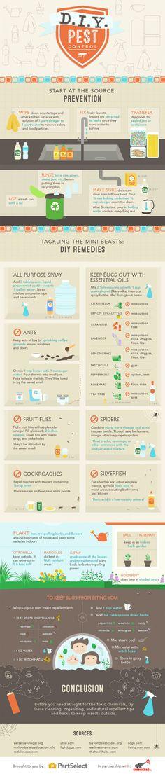 Eloigner les insectes sans produits chimiques