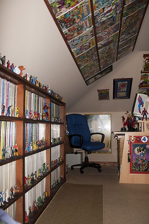 Great comic shelving | future video game room in 2019 ...
