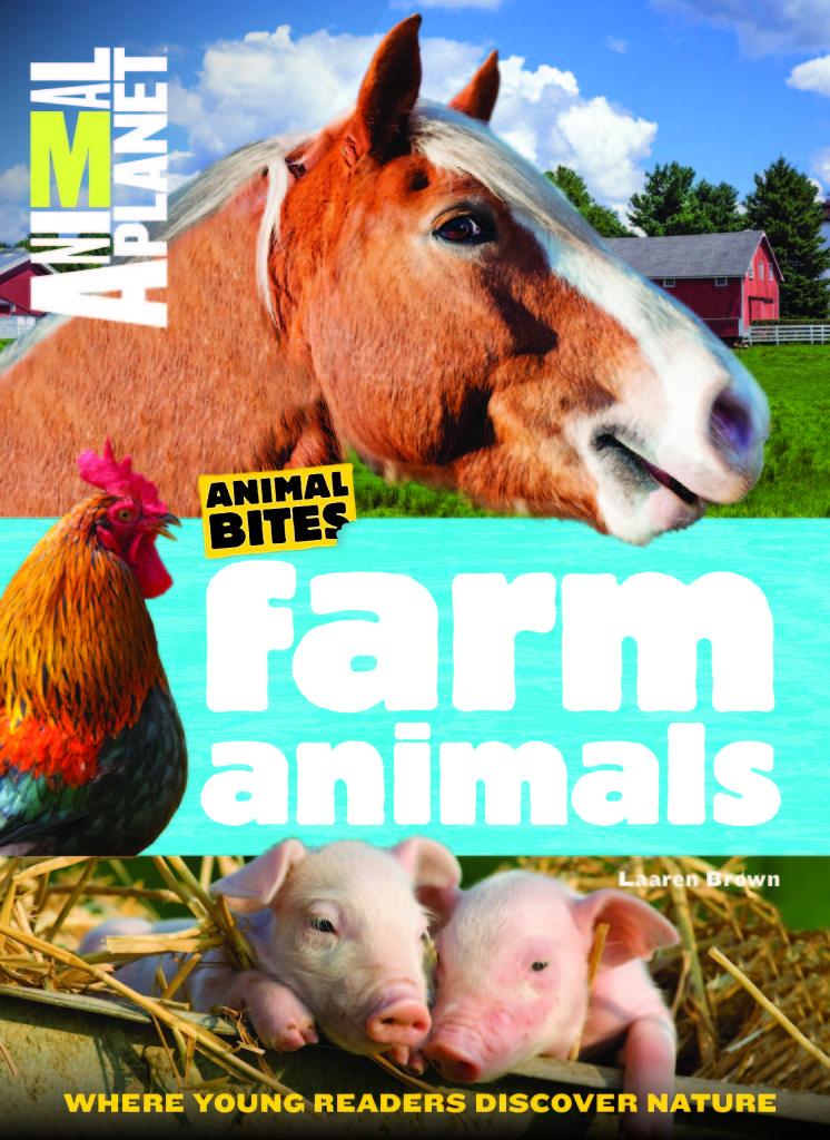 Childrens book review animal animal bites farm