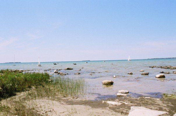 Beautiful Beach in Red Bay, Ontario www terrihastings ca | Beautiful