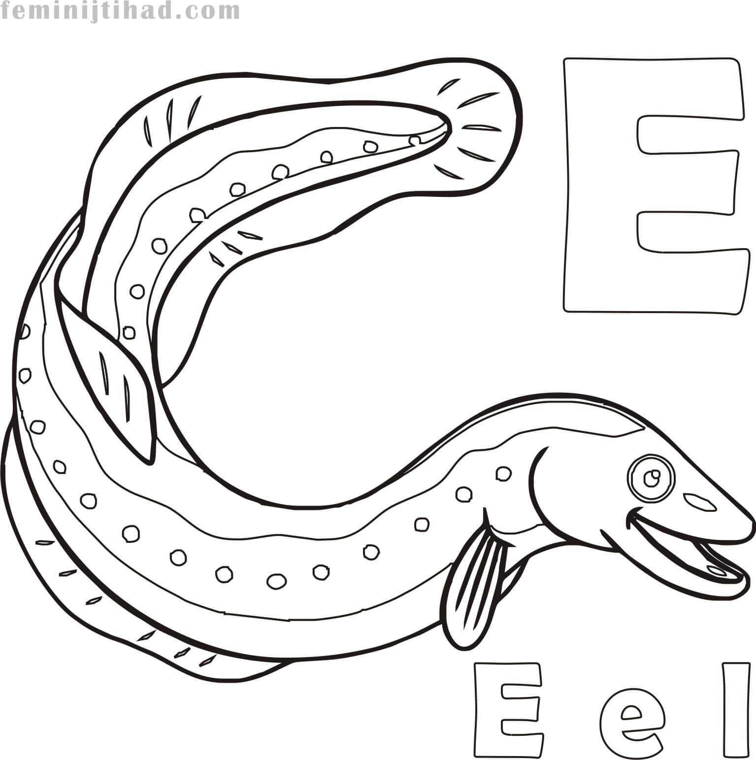 Free Eel Coloring Pages Printable Animal Coloring Pages