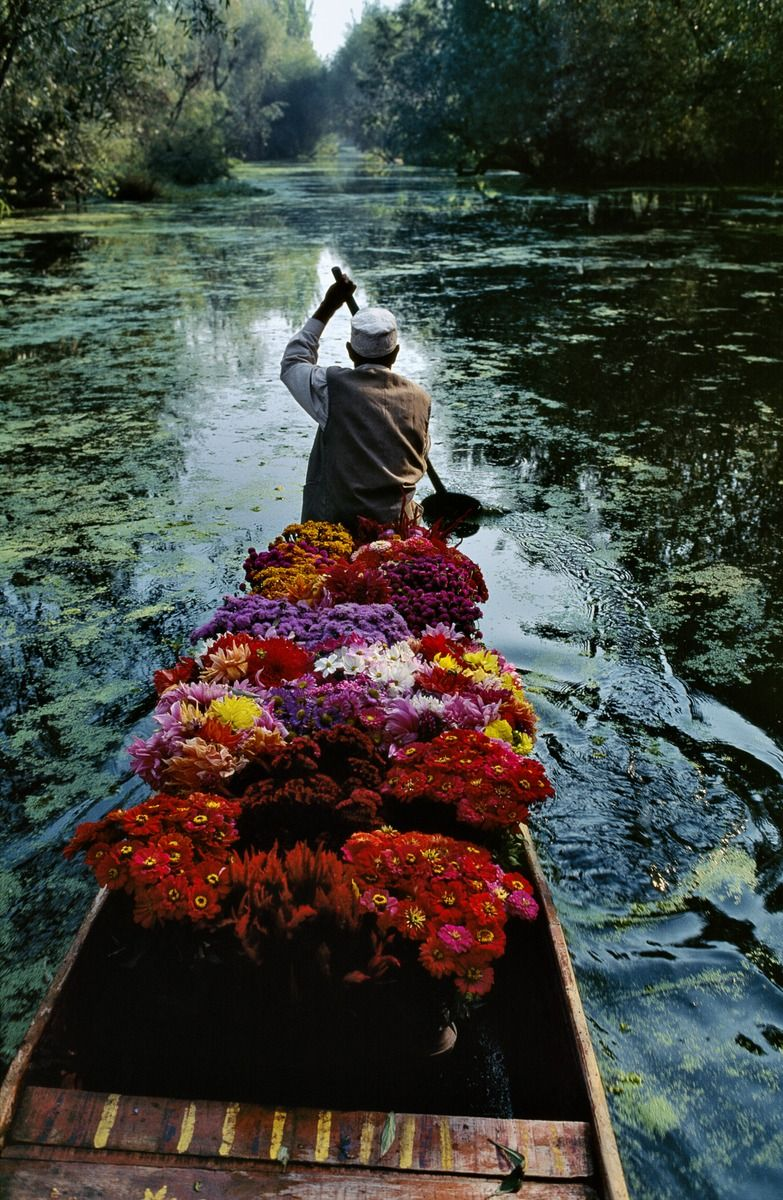fotojournalismus:  A flower seller on Dal Lake in Kashmir.  Photo by Steve McCurry (via stevemccurrystudios)
