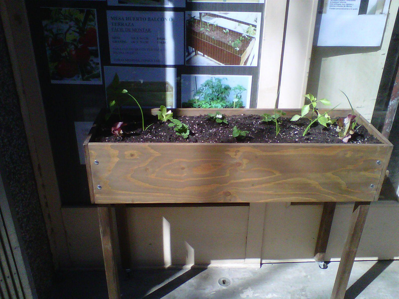 Mesa Para Cultivar Hortalizas En Tu Terraza O Balcón En La