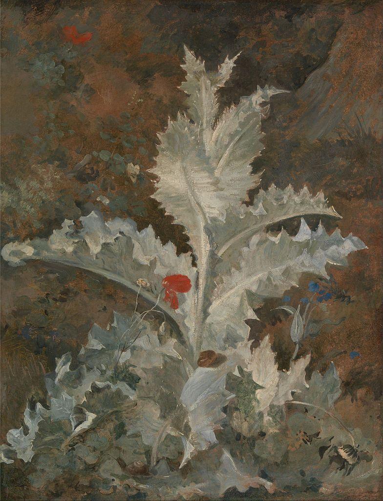 A Thistle - John Crome