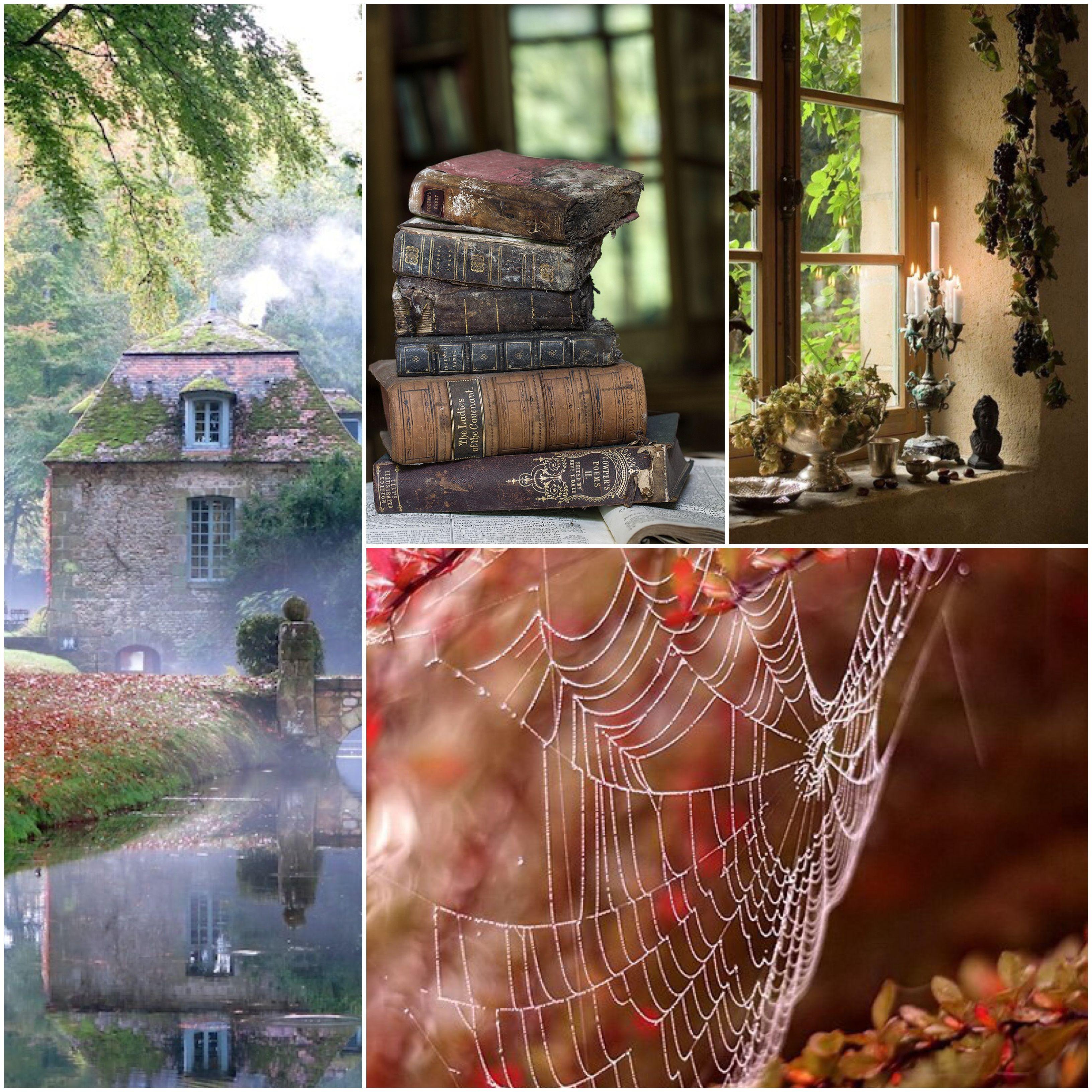 Mattino d'autunno  Che dolcezza infantile nella mattinata tranquilla! C'è il sole tra le foglie gialle e i ragni tendono fra i rami le loro strade di seta.  ~ F. Garcia Lorca