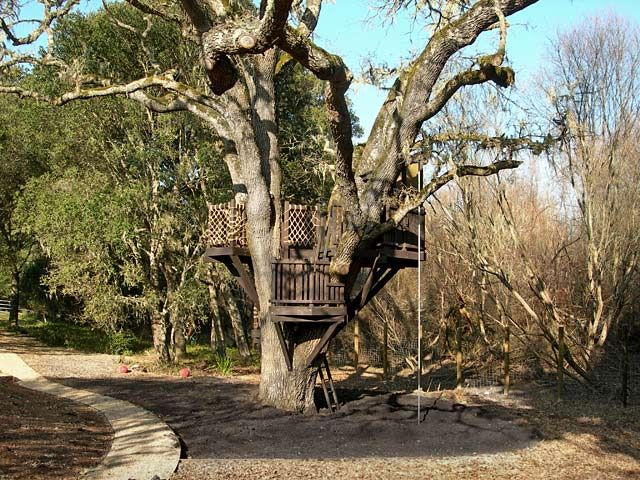 Barbara+Butler-Extraordinary+Play+Structures+for+Kids+-Escalade+Tree+Fort