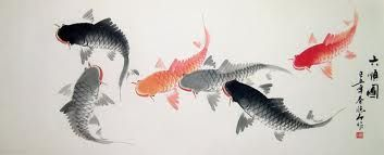chinese fish - Google Search