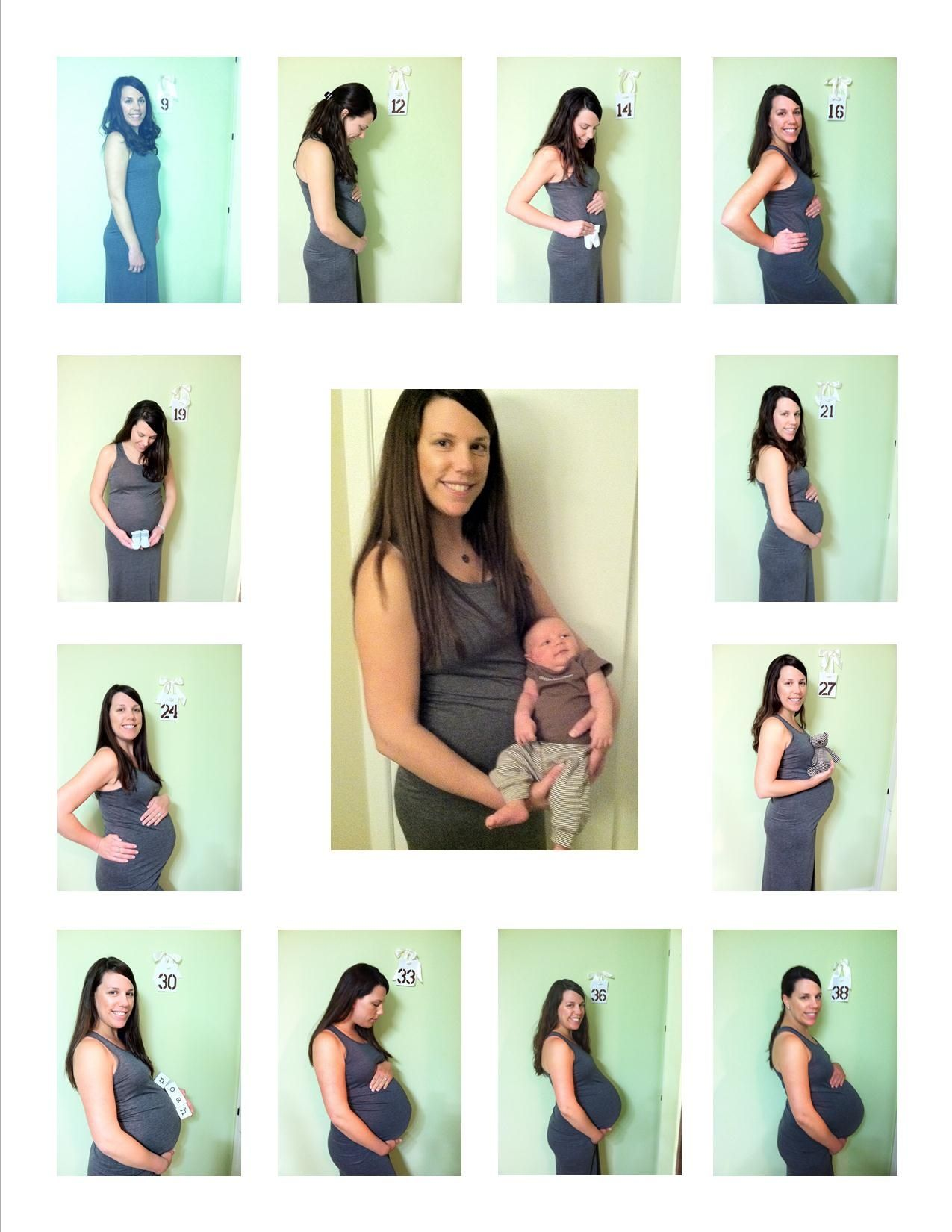 Schwangerschaft Bauchfotos Monthly Pregnancy Pictures Maternity Photo Ideas