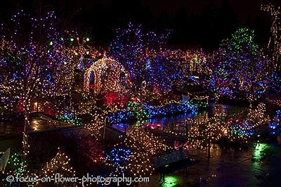 ee13c65c0a007cf5618089d348f67448 - Moody Gardens Festival Of Lights Tickets