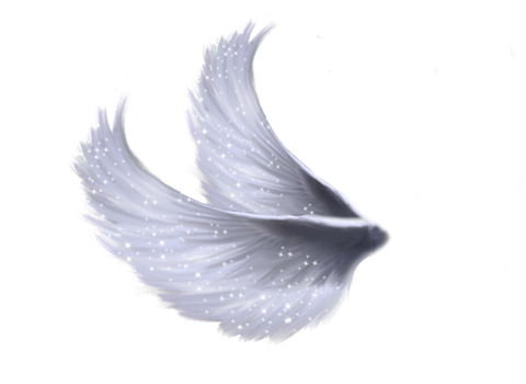 Wings Png By Moonglowlilly On Deviantart Wings Png Angel Wings Clip Art Angel Wings Png