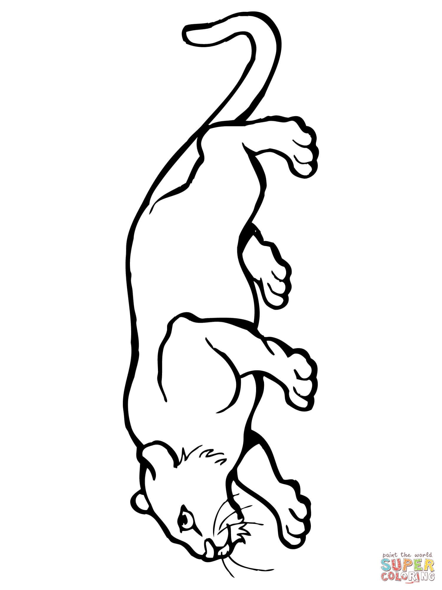 Mountain Lion Coloring Page Free Printable Coloring Pages Lion