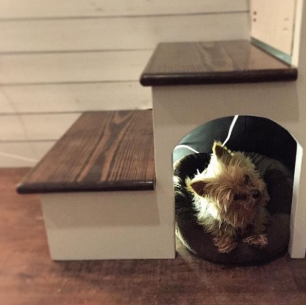 Couple Designs Tiny House Fit For 3 Dogs And So Much Stuff Best
