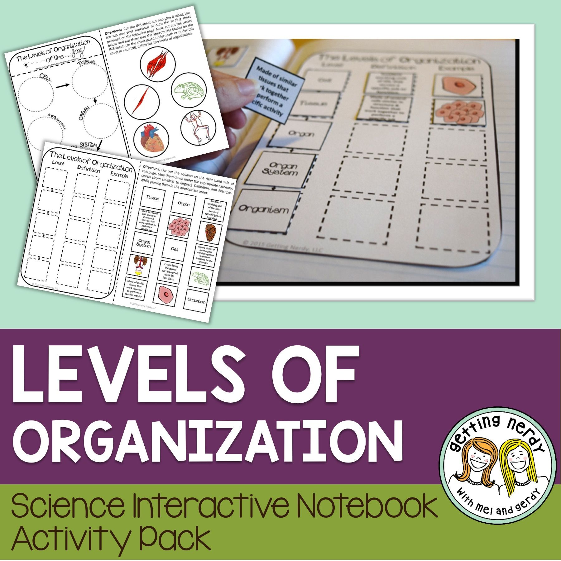 Science Interactive Notebook Levels Of Organization Needs Of Living Things Interactive Science Notebook Interactive Notebooks Interactive Notebook Activities