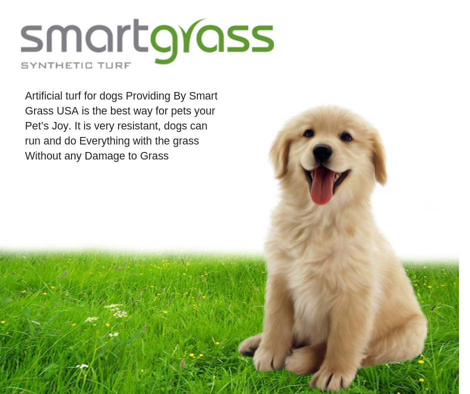 Visit Smart Grass Or Call Us 310 678 7467 To Buy Artificial Grass Or Artificial Grass In Artificial Grass Installation Best Artificial Grass Artificial Grass