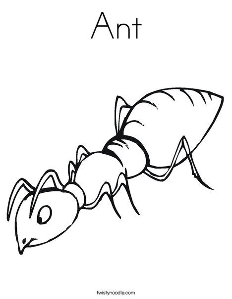 Ant Coloring Page Tracing Twisty Noodle Insect Coloring