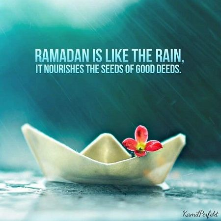 15 Beautiful Ramadan Quotes Display Pictures And Avatars