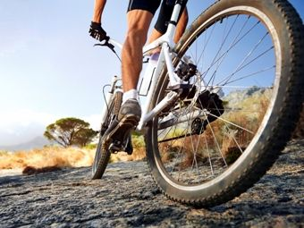 dealsaver®: bringing you local daily deals and coupons - Bicycle Adventures - $150 for $300 Towards Your Bicycle Adventure Group Tour