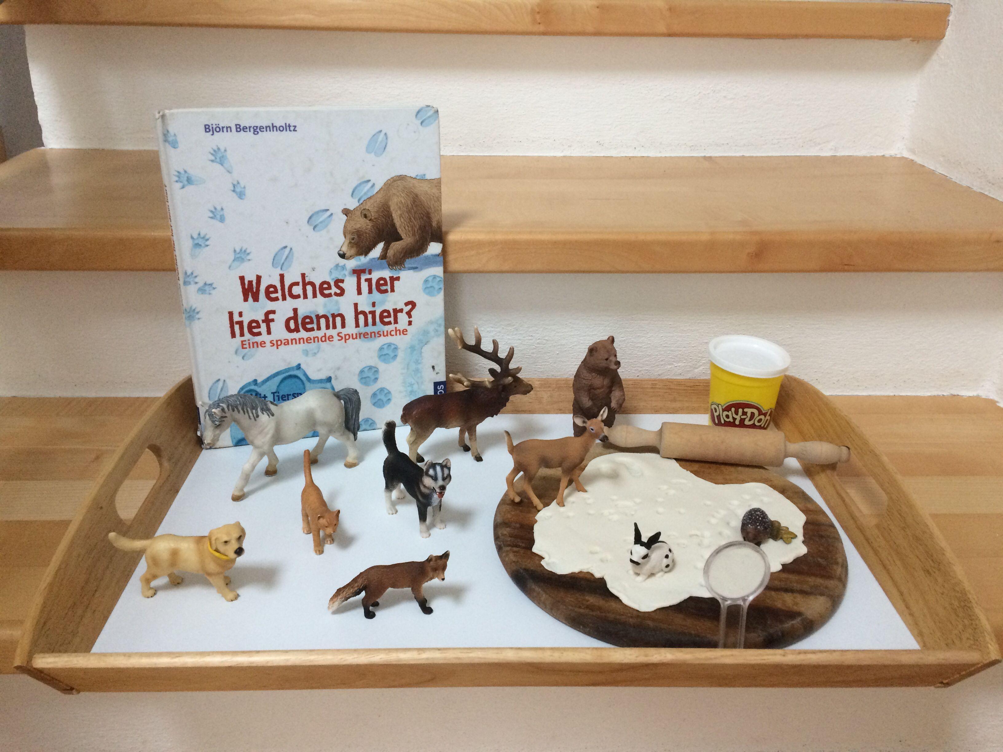 Kindergartenthema Tiere Im Winter Eine Interessante