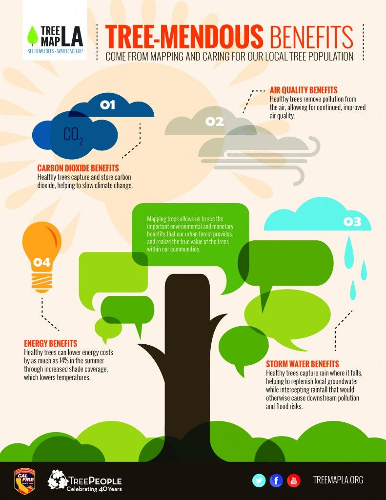 Nice tree benefit infographic from treepeople with