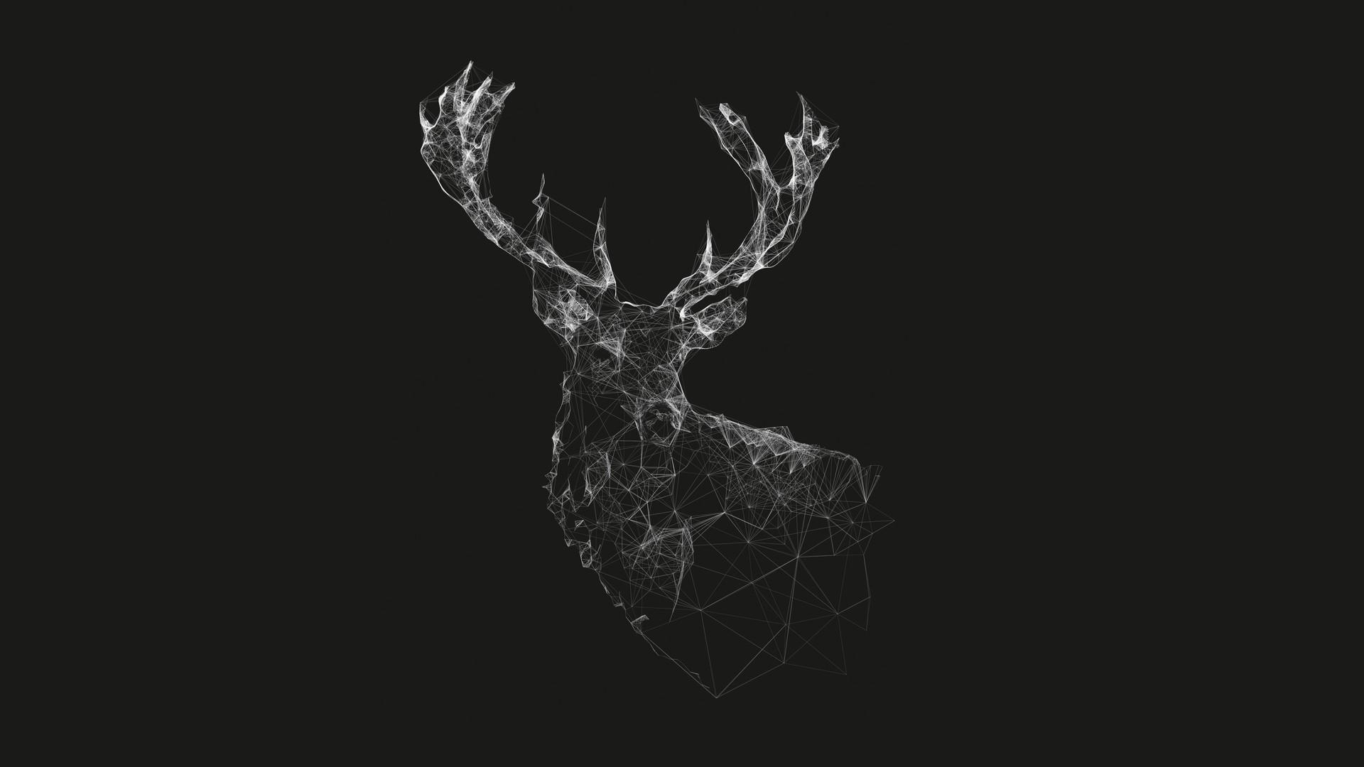 Deer Minimal Deer Artwork Deer Sketch Digital Wallpaper