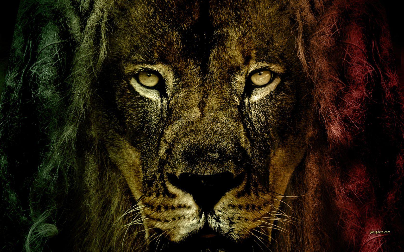 Wallpaper Reggae D Lion Of Judah Wallpapers Wallpaper Panda