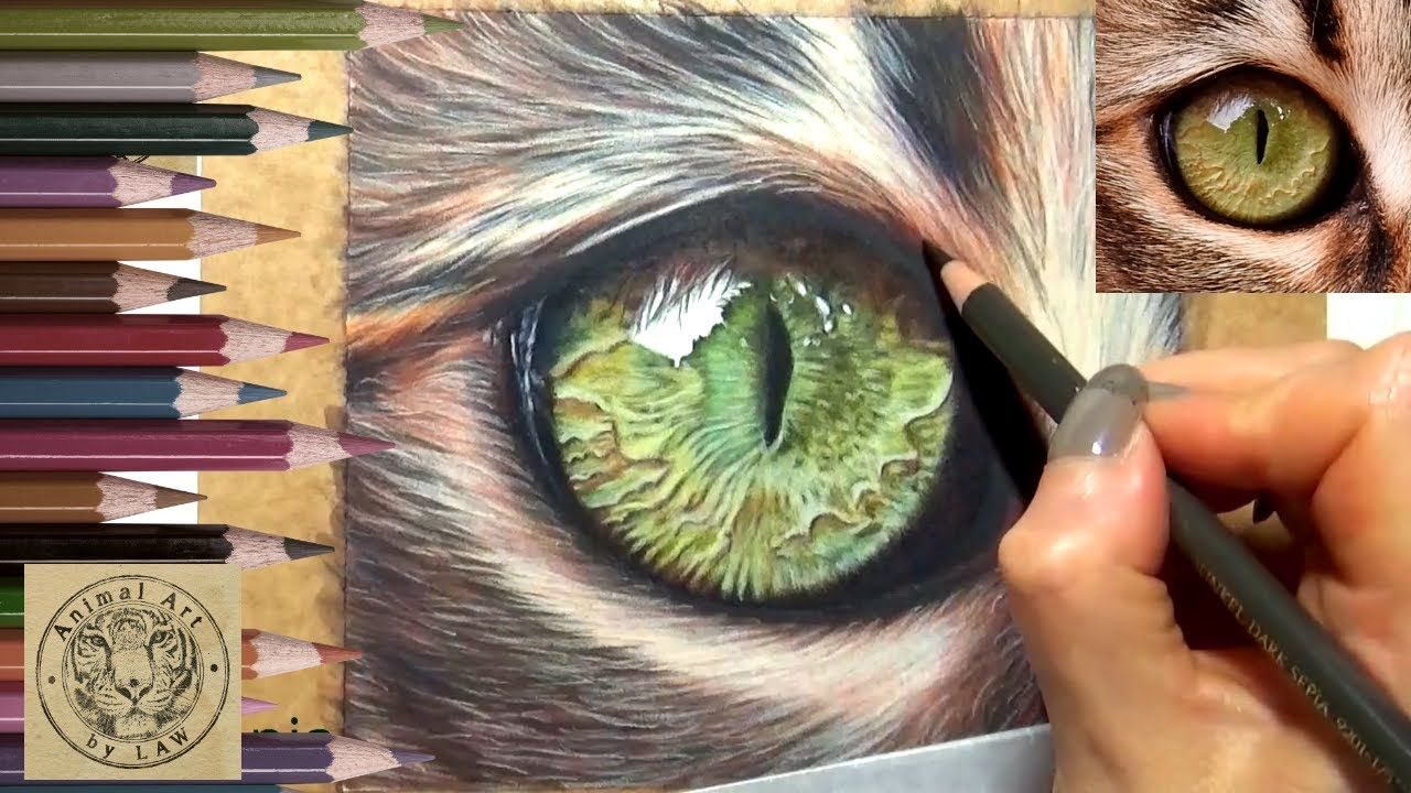 This is a timelapse of a series of full in depth videos of ...