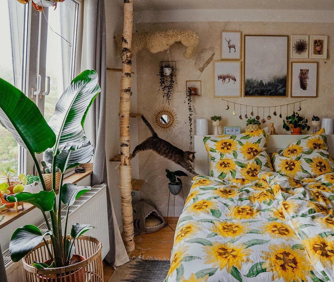 Julia Friederike Auf Instagram Hey Ho Meine Kleinen Fuchse Heute Wird Genau Hier Ganz Viel Gekusc Budget Home Decorating Home Decor Elegant Home Decor