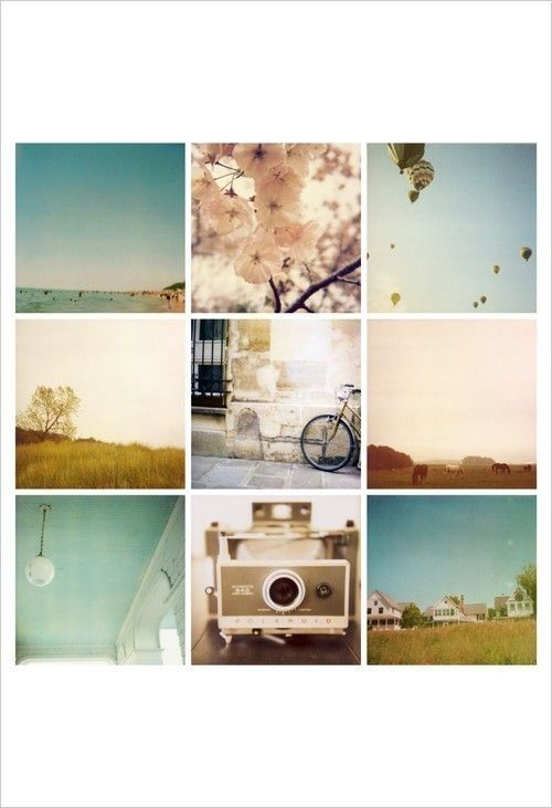 limited edition Calm and Cool polaroids print