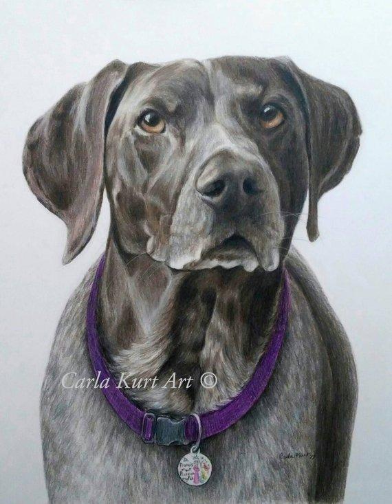 81435a5d9e98 Custom Pet Portrait, dog portrait 11 x 14 cat dog horse memorial, best etsy  shop, top etsy seller be