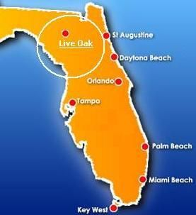 New Smyrna Beach Florida Map.Live Oak Fl Florida Florida Smyrna Beach New Smyrna Beach