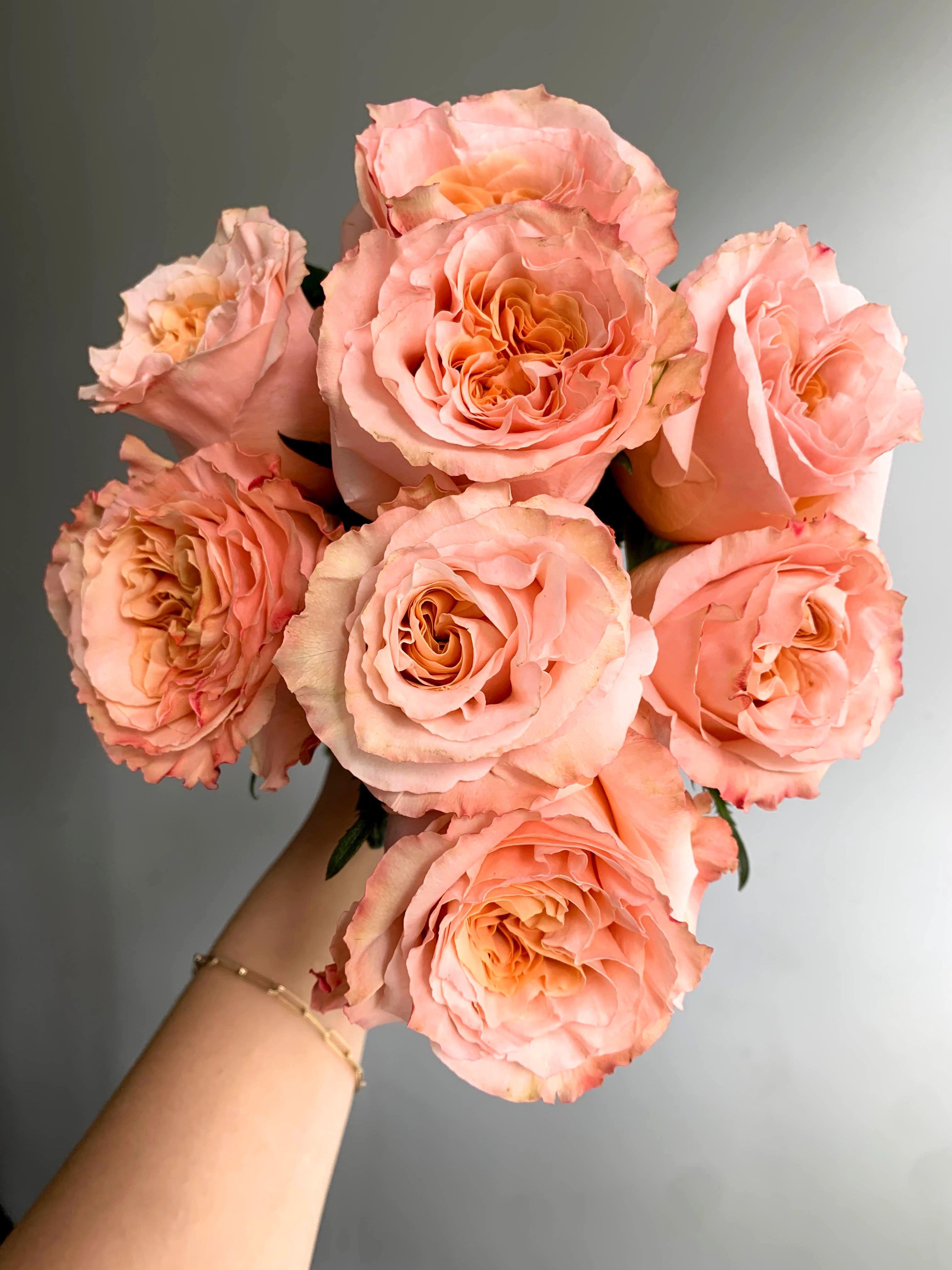 Shimmer Roses In 2021 Coral Flowers Floral Flower Arrangements