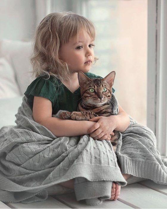Осенняя фотосессия с кошкой - лучшие идеи | Кошки и котята ...
