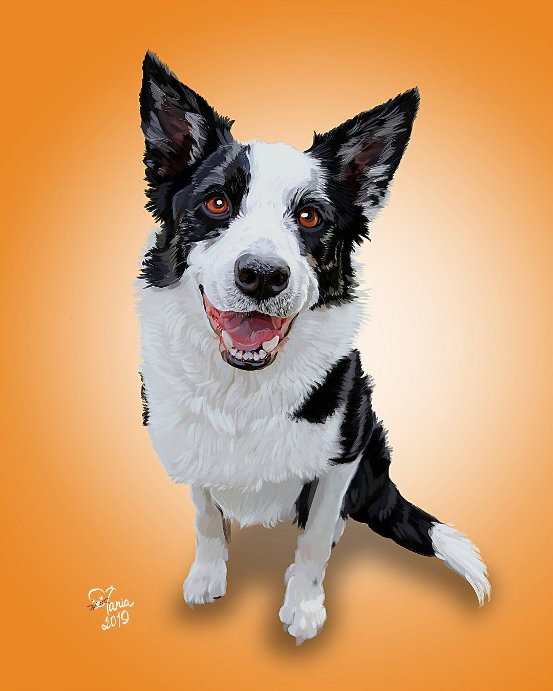 Border Collie Personalized Art