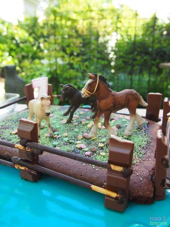 Pferde Kuchen für den Pferdegeburtstag - oder den Geburtstag einer ...
