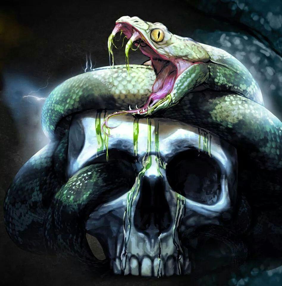 snake, skull (With images) Skull wallpaper, Skull art