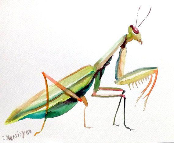 Praying Mantis Original Watercolor Painting Green By Originalonly 24 00 Insect Art Praying Mantis Original Watercolor Painting