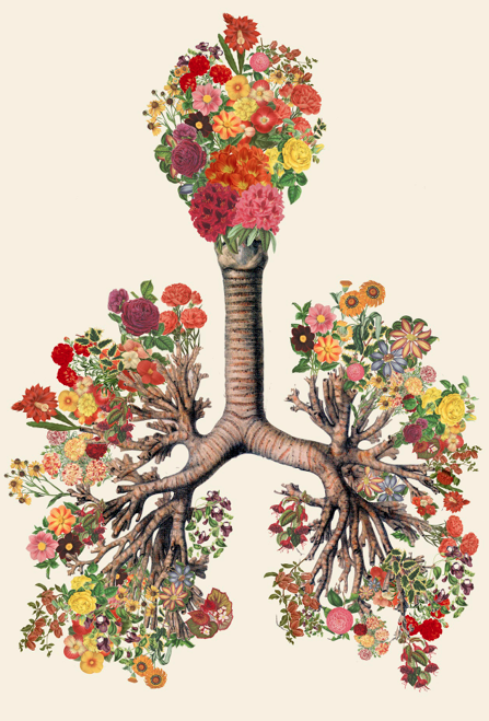 Anatomy of the human body, mixed with flowers, and other elements of ...