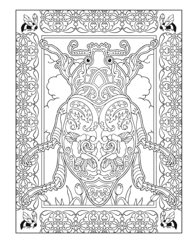 Creative Haven Incredible Insect Designs Coloring Book Dover Publications Designs Coloring Books Coloring Pages Coloring Books