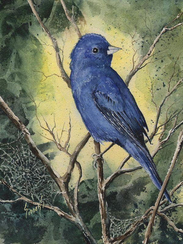 Indigo Bunting Watercolor Art Print Blue bird