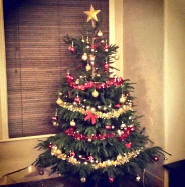 Thanks to @YaelLevs on Twitter for their entry to the #ClaphamTree competition!