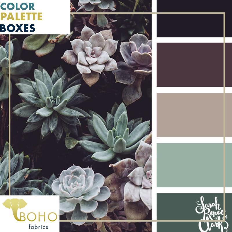 """""""Plum & Succulents"""", Mystery Color Palette Box images"""