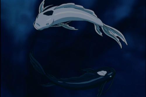 27+ Avatar fish information